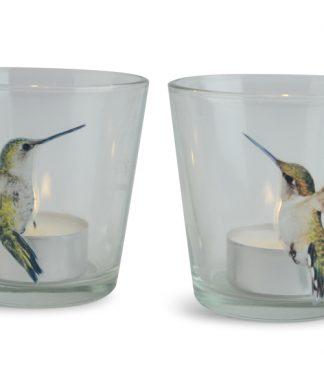 Ljuslykta Kolibri