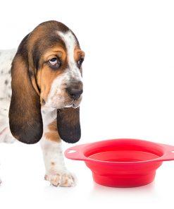 Hopvikbar matskål för Husdjur Heart