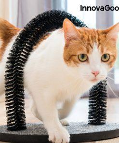 InnovaGoods Klösbräda och Valvkliare för Katter