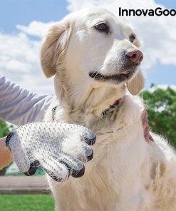 Handske för att Borsta och Massera Husdjur från InnovaGoods