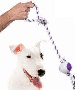 Rep med Boll för Hundar Pet Prior